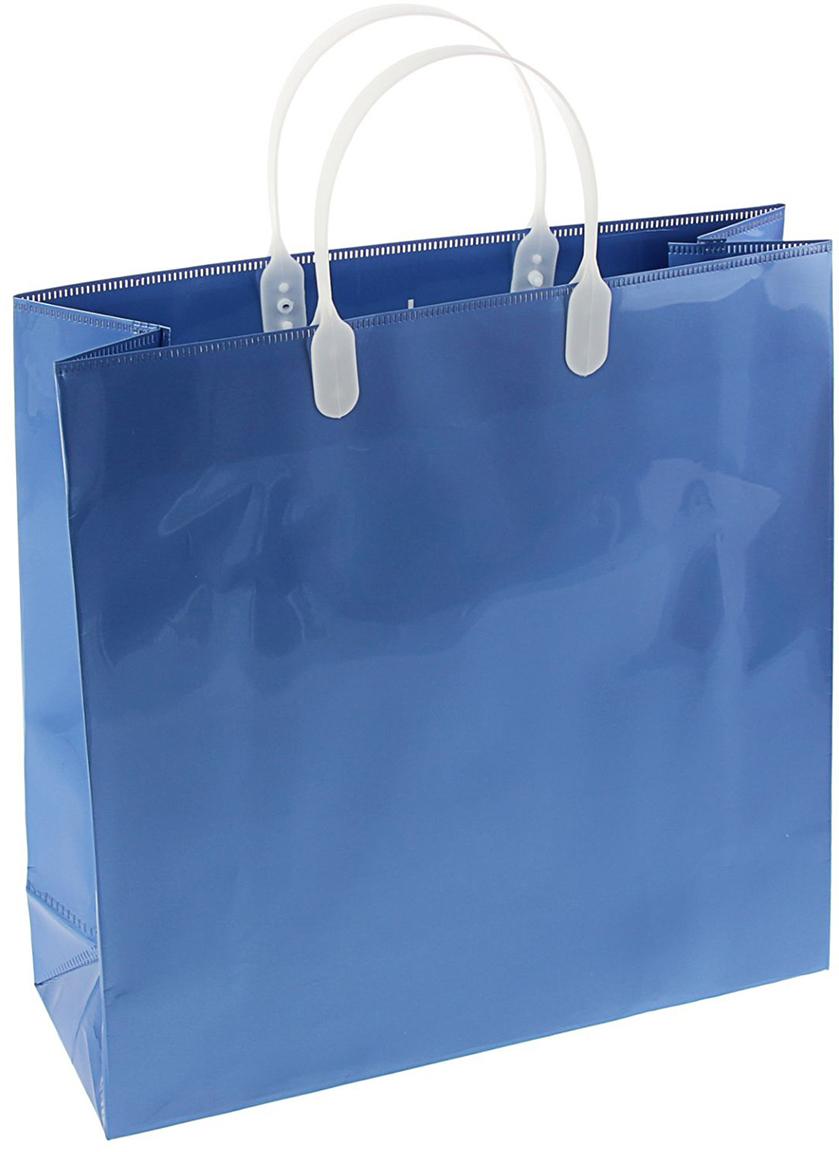 Пакет подарочный, цвет: синий, 30 х 30 см. 14439801443980Мягкие пластиковые пакеты - эксклюзивный товар 2 в 1. Он сочетает в себе пластиковую сумку для бытовых и хозяйственных нужд и подарочный пакет универсального назначения. Удобные ручки с застежками надежно запирают сумку-пакет. Максимальная рекомендованная нагрузка - 20 кг. Окантовка по краям сохраняет форму сумки. Дно не имеет швов, которые могут разойтись. Мягкая толстая пленка, используемая для изготовления пакета, плотностью 150/160 микрон обеспечивает приятные тактильные ощущения и долговечность. Специальный состав пленки придает прочность швам, сохраняет глянец и нестираемость рисунка. Жесткое дно защищено от влаги и разрывов.