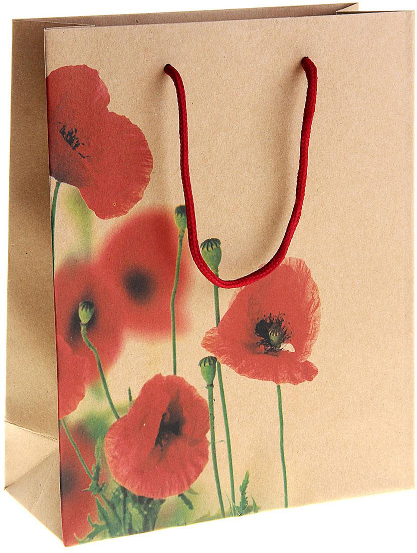 Пакет подарочный Маки, цвет: коричневый, 15 х 6 х 20 см. 149229149229Любой подарок начинается с упаковки. Что может быть трогательнее и волшебнее, чем ритуал разворачивания полученного презента. И именно оригинальная, со вкусом выбранная упаковка выделит ваш подарок из массы других. Она продемонстрирует самые теплые чувства к виновнику торжества и создаст сказочную атмосферу праздника. Пакет-крафт Маки - это то, что вы искали.