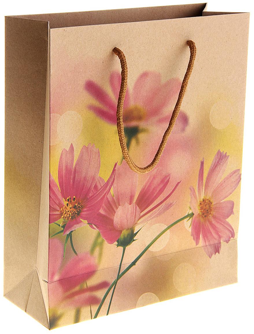 """Любой подарок начинается с упаковки. Что может быть трогательнее и волшебнее, чем ритуал разворачивания полученного презента. И именно оригинальная, со вкусом выбранная упаковка выделит ваш подарок из массы других. Она продемонстрирует самые теплые чувства к виновнику торжества и создаст сказочную атмосферу праздника. Пакет-крафт """"Космея"""" - это то, что вы искали."""
