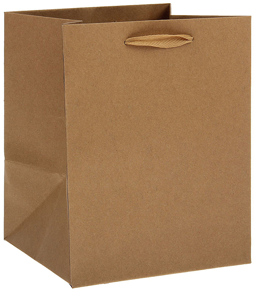 Любой подарок начинается с упаковки. Что может быть трогательнее и волшебнее, чем ритуал разворачивания полученного презента. И именно оригинальная, со вкусом выбранная упаковка выделит ваш подарок из массы других. Она продемонстрирует самые теплые чувства к виновнику торжества и создаст сказочную атмосферу праздника. Пакет-крафт, без печати - это то, что вы искали.