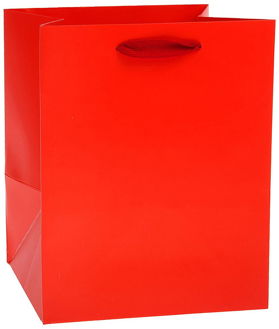 Пакет подарочный, цвет: красный, 25 х 20 х 19 см. 15372621537262Любой подарок начинается с упаковки. Что может быть трогательнее и волшебнее, чем ритуал разворачивания полученного презента. И именно оригинальная, со вкусом выбранная упаковка выделит ваш подарок из массы других. Она продемонстрирует самые теплые чувства к виновнику торжества и создаст сказочную атмосферу праздника. Пакет ламинированный - это то, что вы искали.