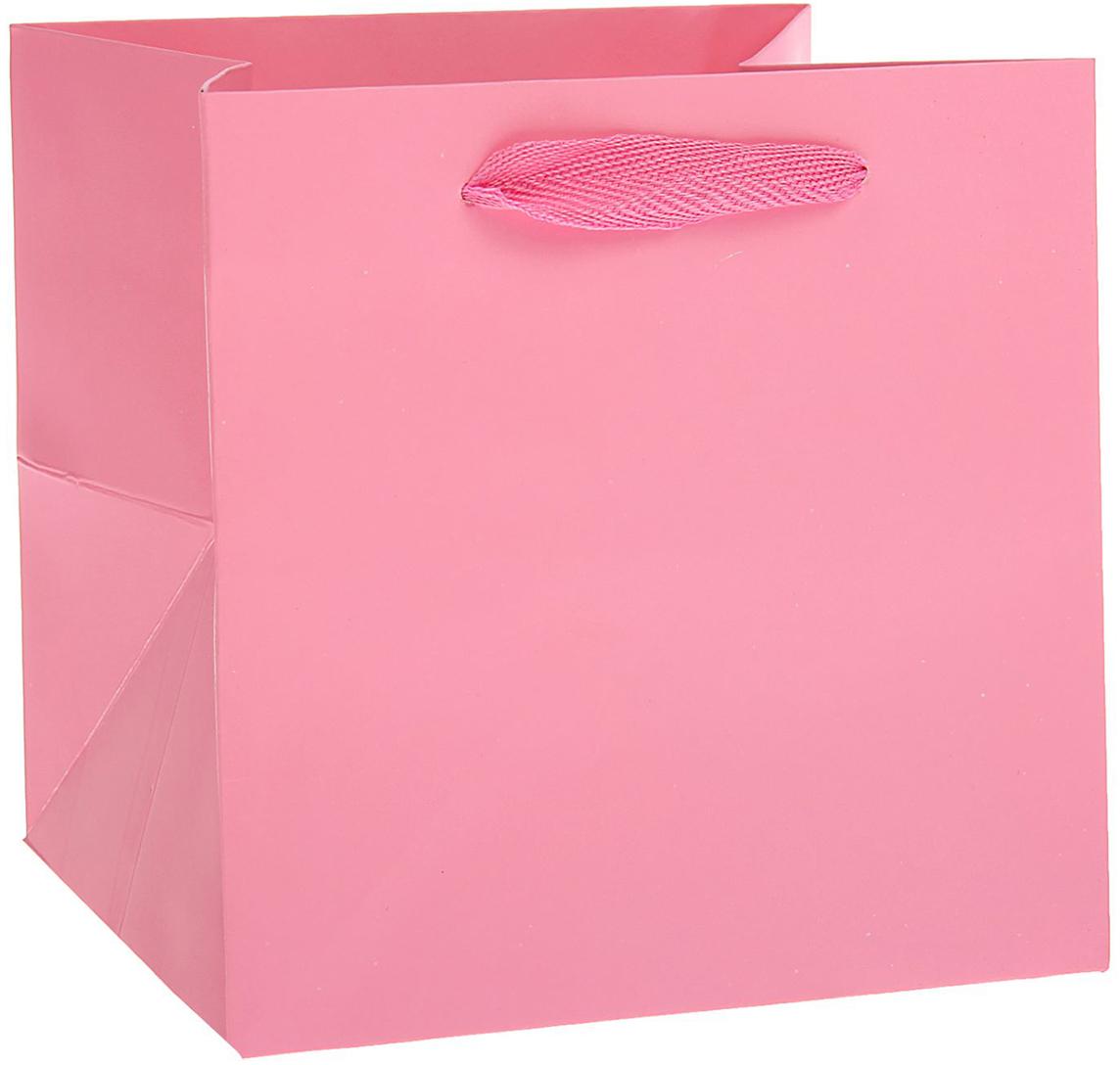 Пакет подарочный, цвет: розовый, 30 х 30 х 30 см. 15372681537268Любой подарок начинается с упаковки. Что может быть трогательнее и волшебнее, чем ритуал разворачивания полученного презента. И именно оригинальная, со вкусом выбранная упаковка выделит ваш подарок из массы других. Она продемонстрирует самые теплые чувства к виновнику торжества и создаст сказочную атмосферу праздника. Пакет ламинированный - это то, что вы искали.