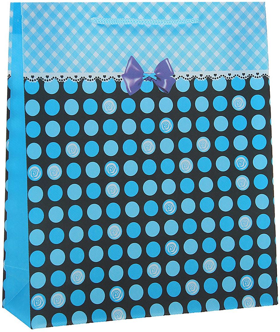 Пакет подарочный Кружочки, цвет: синий, 23 х 27 х 8 см. 15586571558657Любой подарок начинается с упаковки. Что может быть трогательнее и волшебнее, чем ритуал разворачивания полученного презента. И именно оригинальная, со вкусом выбранная упаковка выделит ваш подарок из массы других. Она продемонстрирует самые теплые чувства к виновнику торжества и создаст сказочную атмосферу праздника - это то, что вы искали.