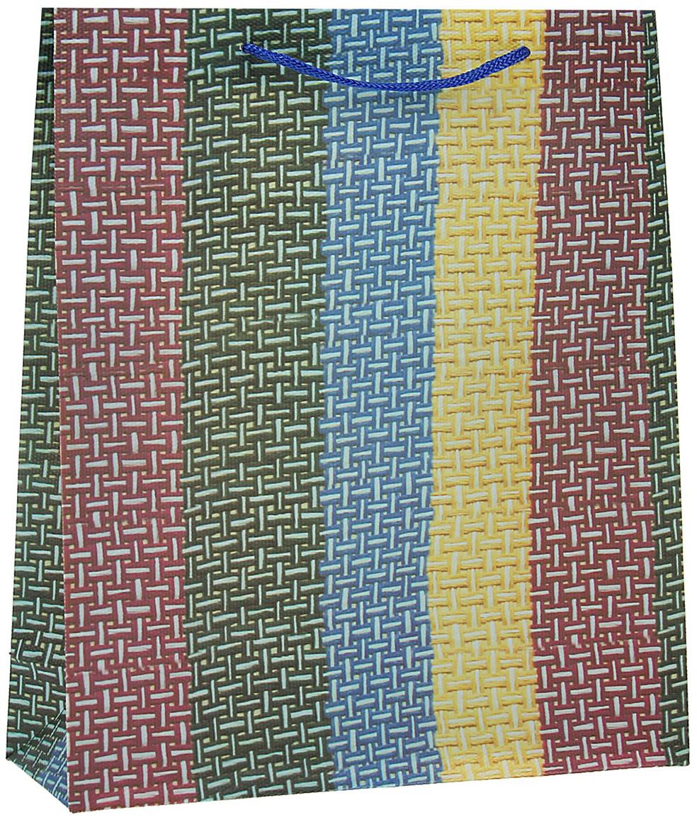Пакет подарочный Полотно, цвет: мультиколор, 26 х 34 х 8 см. 15586911558691Любой подарок начинается с упаковки. Что может быть трогательнее и волшебнее, чем ритуал разворачивания полученного презента. И именно оригинальная, со вкусом выбранная упаковка выделит ваш подарок из массы других. Она продемонстрирует самые теплые чувства к виновнику торжества и создаст сказочную атмосферу праздника - это то, что вы искали.