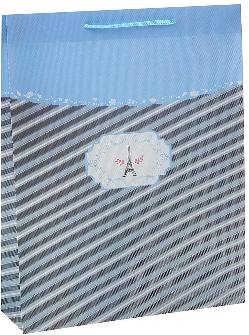 Пакет подарочный Париж, цвет: синий, 26 х 34 х 8 см. 15587031558703Любой подарок начинается с упаковки. Что может быть трогательнее и волшебнее, чем ритуал разворачивания полученного презента. И именно оригинальная, со вкусом выбранная упаковка выделит ваш подарок из массы других. Она продемонстрирует самые теплые чувства к виновнику торжества и создаст сказочную атмосферу праздника - это то, что вы искали.