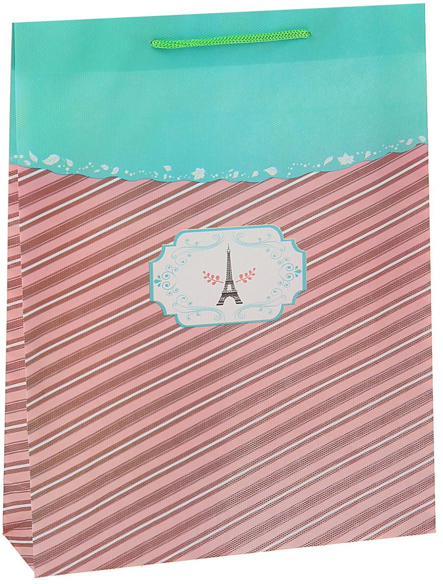 Пакет подарочный Париж, цвет: бирюзовый, 26 х 34 х 8 см. 15587061558706Любой подарок начинается с упаковки. Что может быть трогательнее и волшебнее, чем ритуал разворачивания полученного презента. И именно оригинальная, со вкусом выбранная упаковка выделит ваш подарок из массы других. Она продемонстрирует самые теплые чувства к виновнику торжества и создаст сказочную атмосферу праздника - это то, что вы искали.