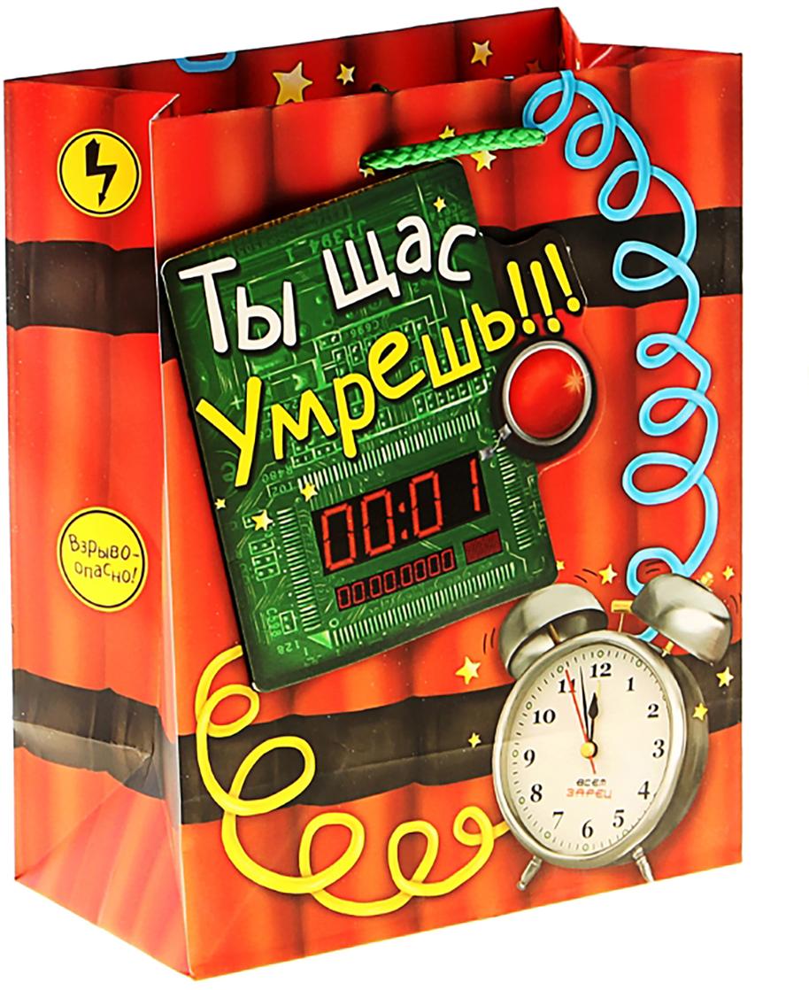 Пакет подарочный Дарите Счастье Бомба, с открыткой, цвет: мультиколор, 29 х 37 см. 156706156706Любой подарок начинается с упаковки. Что может быть трогательнее и волшебнее, чем ритуал разворачивания полученного презента. И именно оригинальная, со вкусом выбранная упаковка выделит ваш подарок из массы других. Она продемонстрирует самые теплые чувства к виновнику торжества и создаст сказочную атмосферу праздника. Пакет-ламинат с открыткой (ламинация) Бомба - это то, что вы искали.