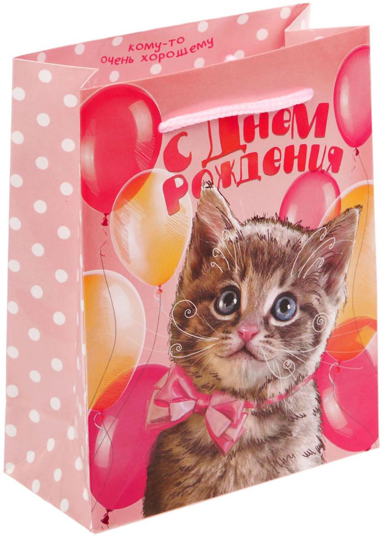 Пакет подарочный Дарите Счастье Ласковый котенок, цвет: мультиколор, 11 х 5 х 14 см. 17175401717540Любой подарок начинается с упаковки. Что может быть трогательнее и волшебнее, чем ритуал разворачивания полученного презента. И именно оригинальная, со вкусом выбранная упаковка выделит ваш подарок из массы других. Она продемонстрирует самые теплые чувства к виновнику торжества и создаст сказочную атмосферу праздника - это то, что вы искали.