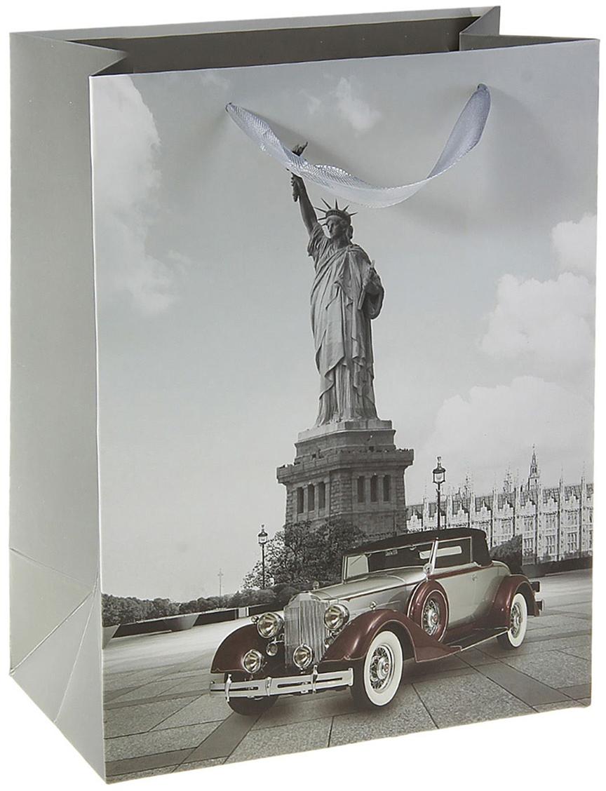 Пакет подарочный Моменты истории. Америка, цвет: серый, 12,5 х 26 х 32 см. 179649179649Любой подарок начинается с упаковки. Что может быть трогательнее и волшебнее, чем ритуал разворачивания полученного презента. И именно оригинальная, со вкусом выбранная упаковка выделит ваш подарок из массы других. Она продемонстрирует самые теплые чувства к виновнику торжества и создаст сказочную атмосферу праздника. Пакет ламинированный Моменты истории. Америка - это то, что вы искали.