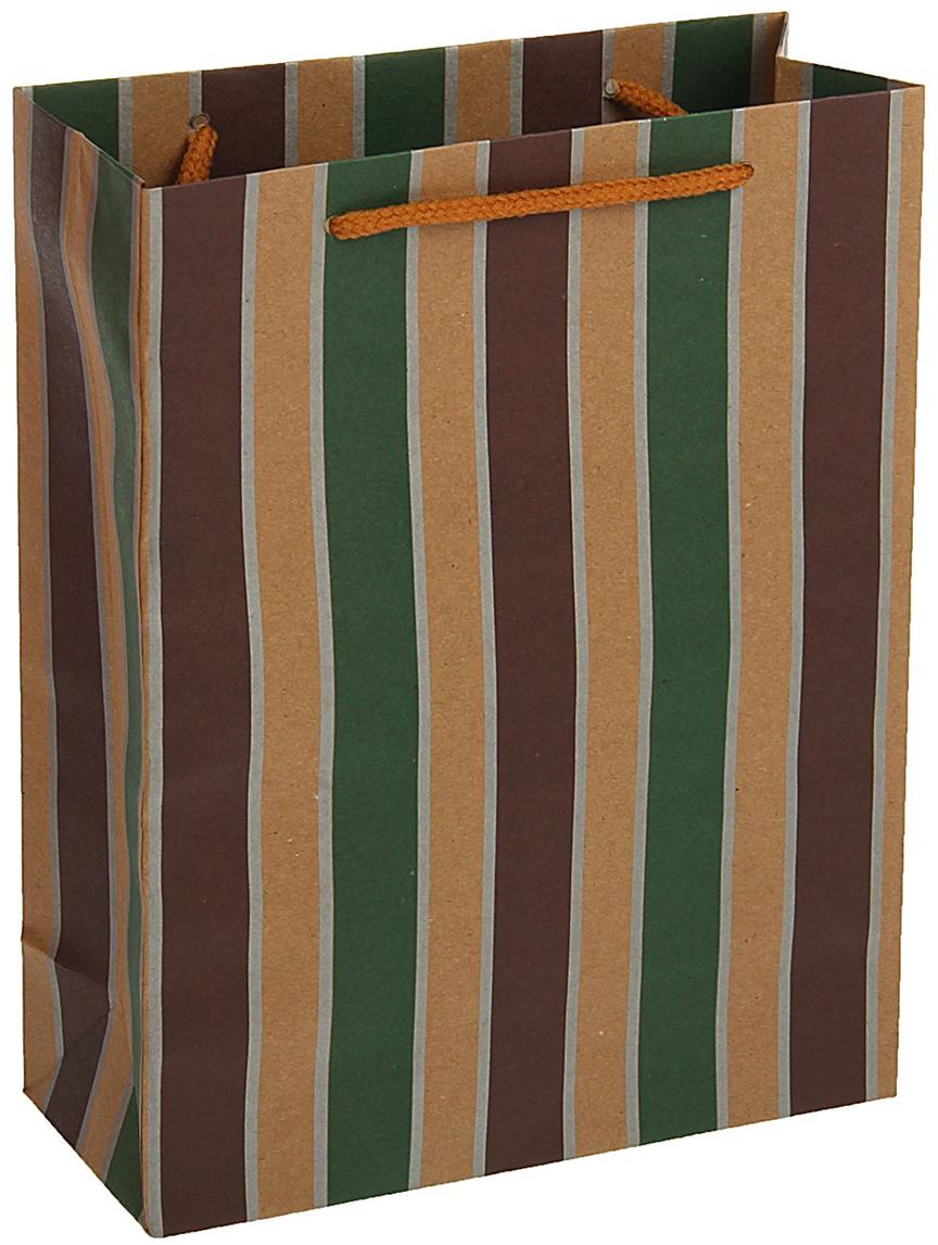 Пакет подарочный, цвет: мультиколор, 33 х 24 х 8 см. 18492401849240Любой подарок начинается с упаковки. Что может быть трогательнее и волшебнее, чем ритуал разворачивания полученного презента. И именно оригинальная, со вкусом выбранная упаковка выделит ваш подарок из массы других. Она продемонстрирует самые теплые чувства к виновнику торжества и создаст сказочную атмосферу праздника - это то, что вы искали.