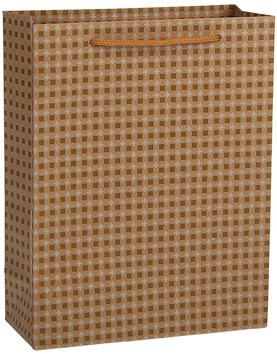 Пакет подарочный, цвет: коричневый, 36 х 27 х 8 см. 18492641849264Любой подарок начинается с упаковки. Что может быть трогательнее и волшебнее, чем ритуал разворачивания полученного презента. И именно оригинальная, со вкусом выбранная упаковка выделит ваш подарок из массы других. Она продемонстрирует самые теплые чувства к виновнику торжества и создаст сказочную атмосферу праздника - это то, что вы искали.