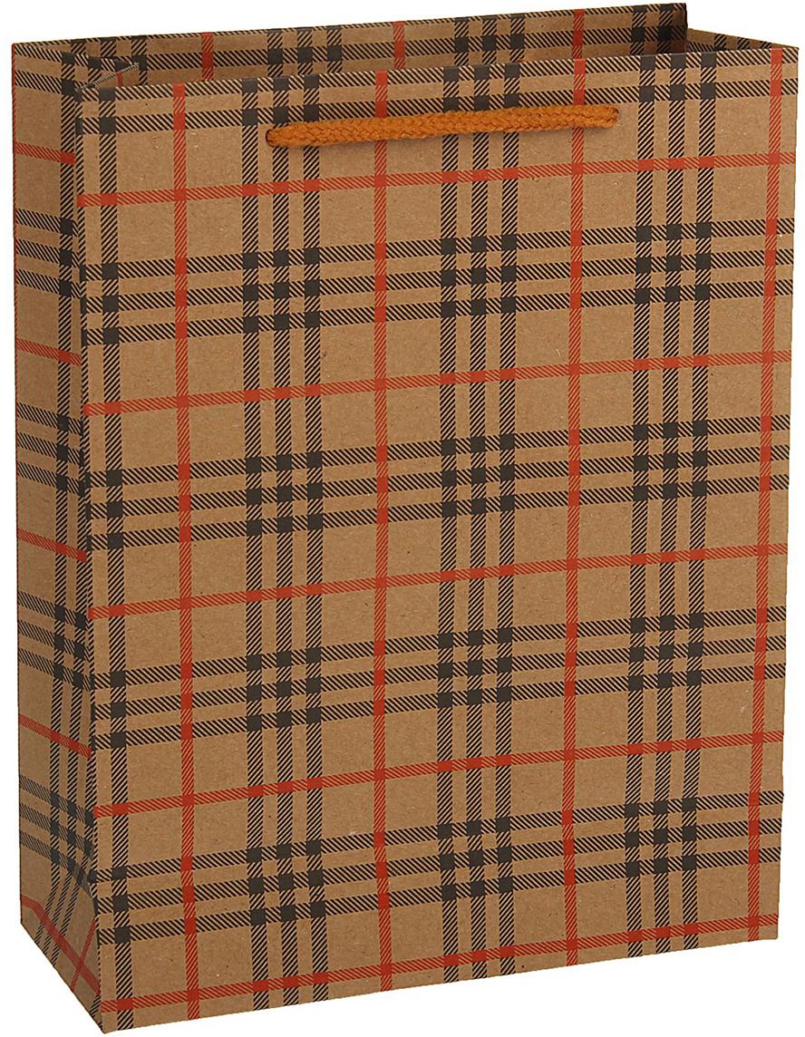 Пакет подарочный, цвет: мультиколор, 42 х 31,5 х 10 см. 18492791849279Любой подарок начинается с упаковки. Что может быть трогательнее и волшебнее, чем ритуал разворачивания полученного презента. И именно оригинальная, со вкусом выбранная упаковка выделит ваш подарок из массы других. Она продемонстрирует самые теплые чувства к виновнику торжества и создаст сказочную атмосферу праздника - это то, что вы искали.