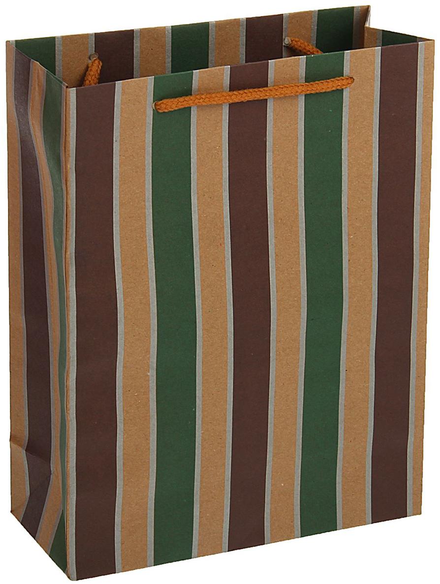 Пакет подарочный, цвет: мультиколор, 42 х 31,5 х 10 см. 18492841849284Любой подарок начинается с упаковки. Что может быть трогательнее и волшебнее, чем ритуал разворачивания полученного презента. И именно оригинальная, со вкусом выбранная упаковка выделит ваш подарок из массы других. Она продемонстрирует самые теплые чувства к виновнику торжества и создаст сказочную атмосферу праздника - это то, что вы искали.