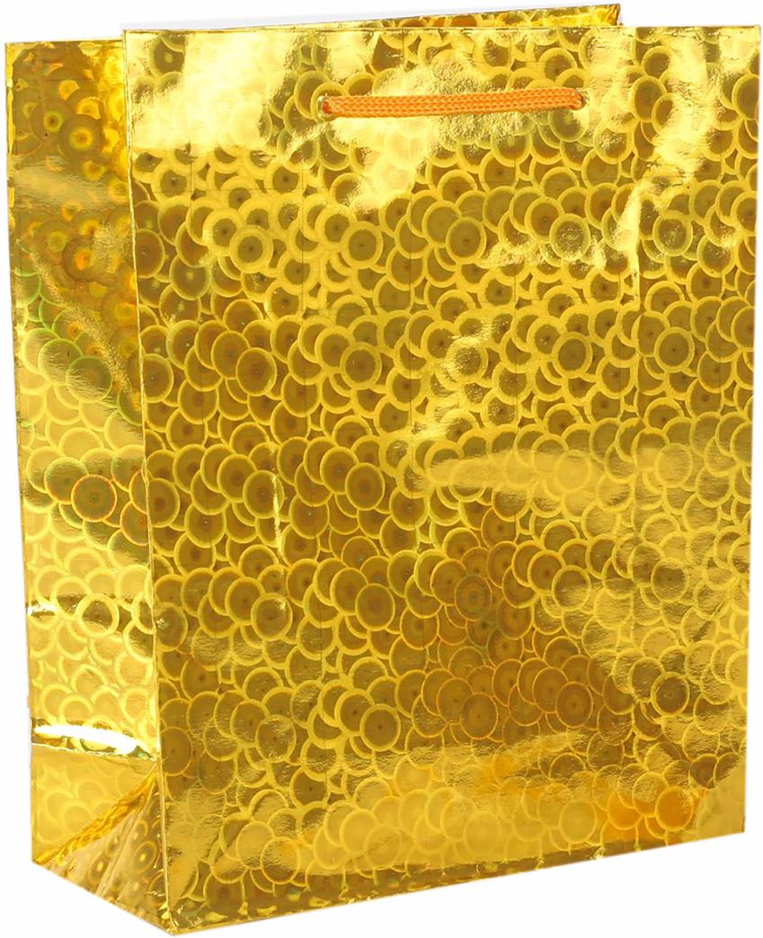 Пакет подарочный, голографический, цвет: золотой, 18 х 23 х 10 см. 18858801885880Любой подарок начинается с упаковки. Что может быть трогательнее и волшебнее, чем ритуал разворачивания полученного презента. И именно оригинальная, со вкусом выбранная упаковка выделит ваш подарок из массы других. Она продемонстрирует самые теплые чувства к виновнику торжества и создаст сказочную атмосферу праздника. Пакет голографический - это то, что вы искали.