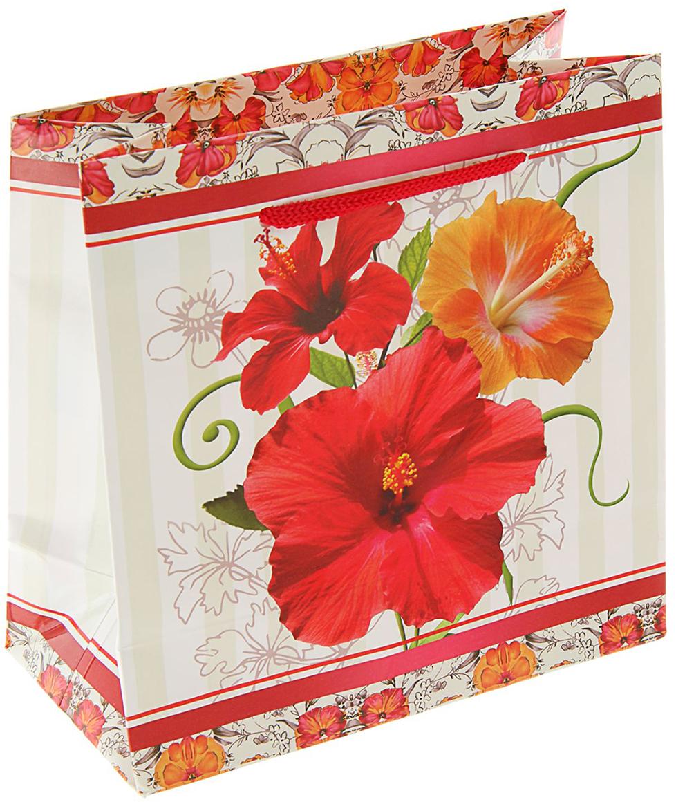 Пакет подарочный Пандора, цвет: красный, 16 х 16 х 7,6 см. 18925601892560Любой подарок начинается с упаковки. Что может быть трогательнее и волшебнее, чем ритуал разворачивания полученного презента. И именно оригинальная, со вкусом выбранная упаковка выделит ваш подарок из массы других. Она продемонстрирует самые теплые чувства к виновнику торжества и создаст сказочную атмосферу праздника - это то, что вы искали.