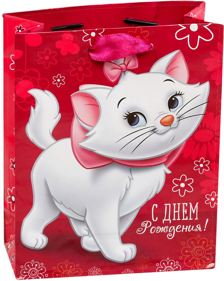 Пакет подарочный Disney Коты аристократы. С Днем рождения, чудесная девочка!, цвет: мультиколор, 18 х 10 х 23 см. 19311601931160Подарки не обязательно делать только по важным поводам. Дарите их спонтанно, без причины, просто для души, ведь главное в этом процессе - удовольствие! А сколько радости получит адресат, когда увидит яркий ламинированный пакет с любимыми героями!Прочная ламинированная бумага с атласными ручками и уникальный дизайн делают его идеальным. Положите в него конфеты или игрушки, и ваш подарок не затеряется среди других.