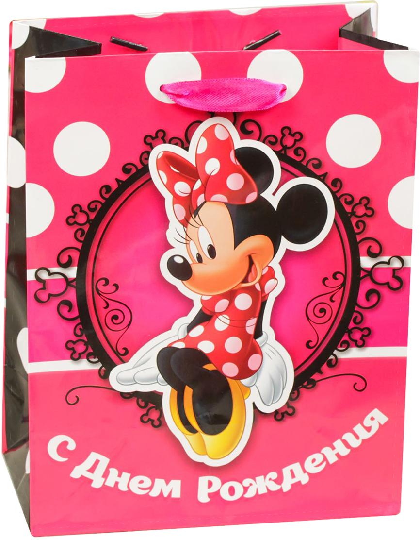 Пакет подарочный Disney Минни Маус. С Днем Рождения, красотка!, цвет: мультиколор, 12 х 5,5 х 15 см. 19311911931191Подарки не обязательно делать только по важным поводам. Дарите их спонтанно, без причины, просто для души, ведь главное в этом процессе - удовольствие! А сколько радости получит адресат, когда увидит яркий ламинированный пакет с любимыми героями!Прочная ламинированная бумага с атласными ручками и уникальный дизайн делают его идеальным. Положите в него конфеты или игрушки, и ваш подарок не затеряется среди других.