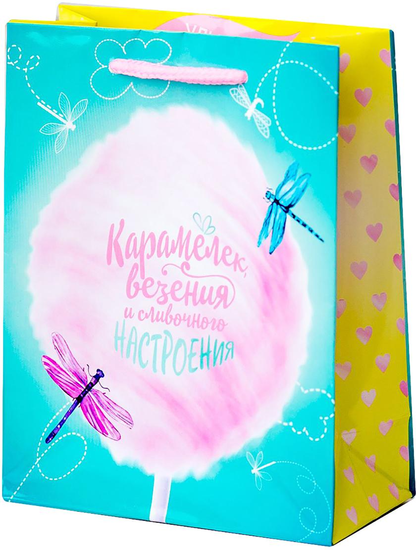 Пакет подарочный Дарите Счастье Сладкого настроения, цвет: мультиколор, 18 х 8 х 23 см. 19350721935072Любой подарок начинается с упаковки. Что может быть трогательнее и волшебнее, чем ритуал разворачивания полученного презента. И именно оригинальная, со вкусом выбранная упаковка выделит ваш подарок из массы других. Она продемонстрирует самые теплые чувства к виновнику торжества и создаст сказочную атмосферу праздника - это то, что вы искали.