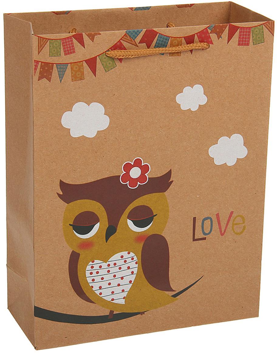 Пакет подарочный Сова цветочек, цвет: коричневый, 11 х 6 х 14 см. 19676631967663Любой подарок начинается с упаковки. Что может быть трогательнее и волшебнее, чем ритуал разворачивания полученного презента. И именно оригинальная, со вкусом выбранная упаковка выделит ваш подарок из массы других. Она продемонстрирует самые теплые чувства к виновнику торжества и создаст сказочную атмосферу праздника - это то, что вы искали.