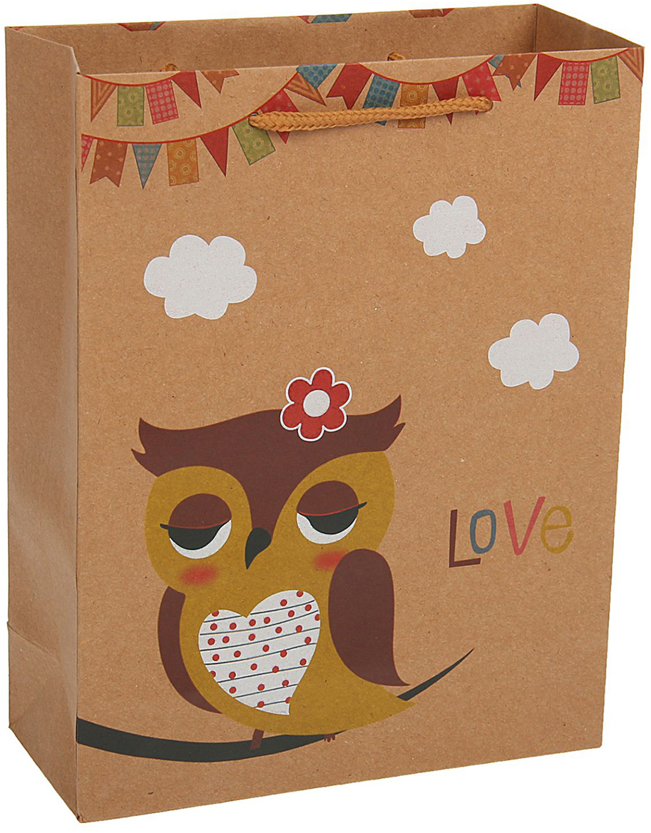Пакет подарочный Сова цветочек, цвет: коричневый, 19 х 8 х 25 см. 19676661967666Любой подарок начинается с упаковки. Что может быть трогательнее и волшебнее, чем ритуал разворачивания полученного презента. И именно оригинальная, со вкусом выбранная упаковка выделит ваш подарок из массы других. Она продемонстрирует самые теплые чувства к виновнику торжества и создаст сказочную атмосферу праздника - это то, что вы искали.