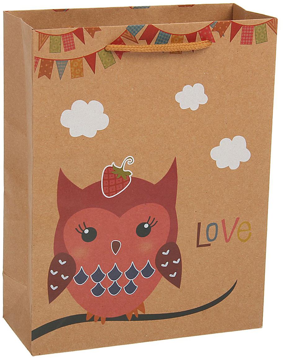 Пакет подарочный Сова клубничка, цвет: коричневый, 19 х 8 х 25 см. 19676671967667Любой подарок начинается с упаковки. Что может быть трогательнее и волшебнее, чем ритуал разворачивания полученного презента. И именно оригинальная, со вкусом выбранная упаковка выделит ваш подарок из массы других. Она продемонстрирует самые теплые чувства к виновнику торжества и создаст сказочную атмосферу праздника - это то, что вы искали.