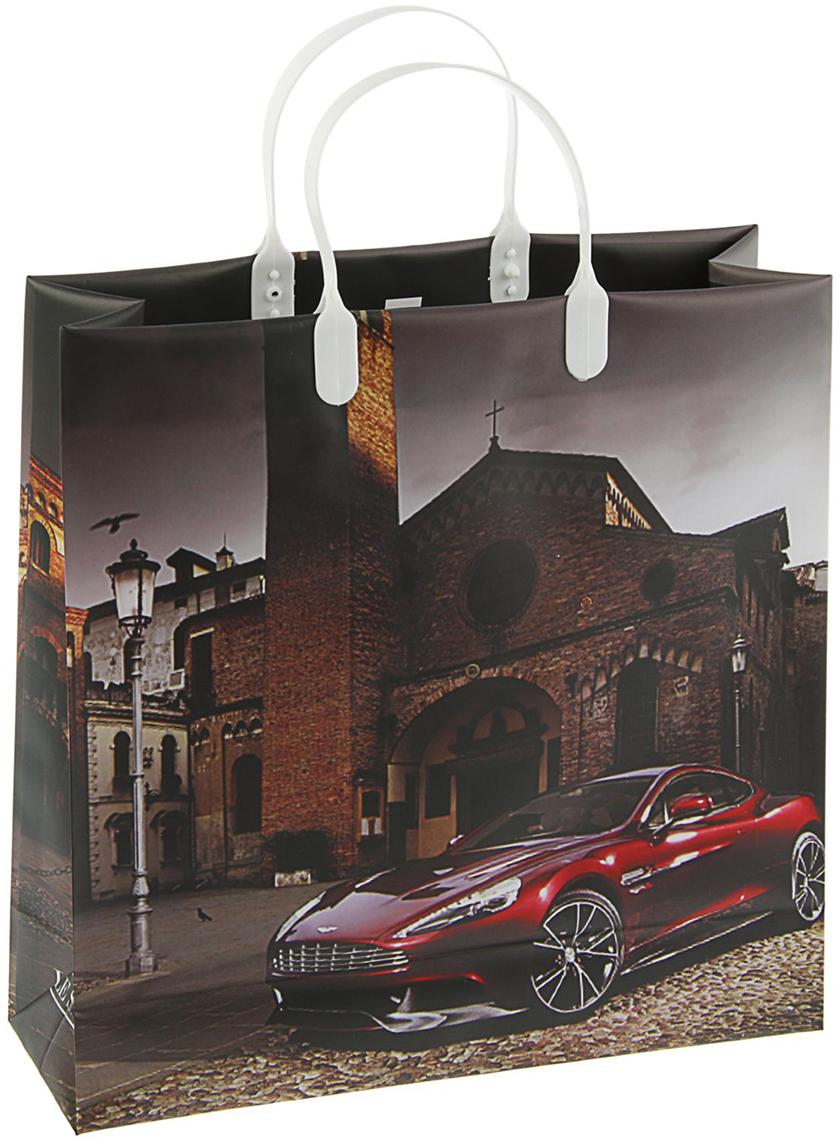 Пакет подарочный Скорость, цвет: серый, 30 х 30 см. 20997012099701Любой подарок начинается с упаковки. Что может быть трогательнее и волшебнее, чем ритуал разворачивания полученного презента. И именно оригинальная, со вкусом выбранная упаковка выделит ваш подарок из массы других. Она продемонстрирует самые теплые чувства к виновнику торжества и создаст сказочную атмосферу праздника - это то, что вы искали.
