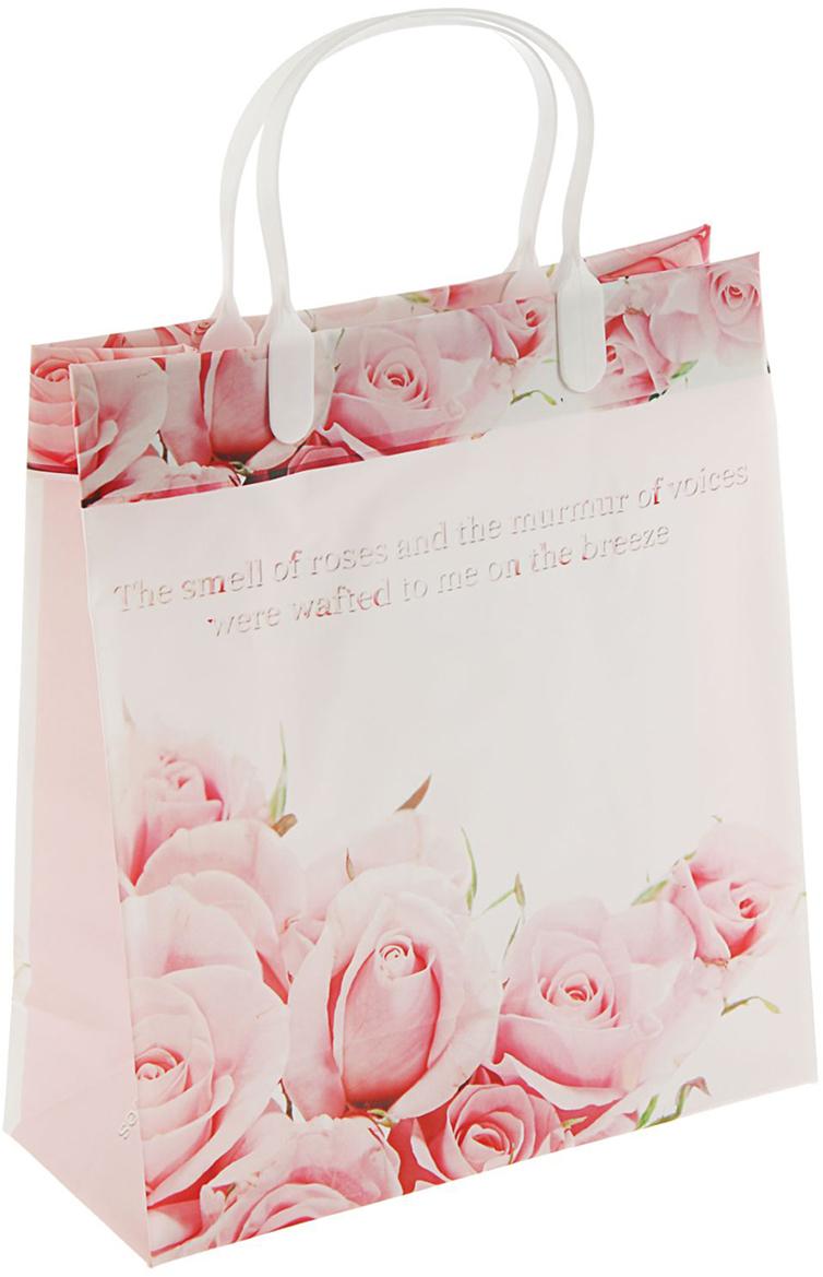 Пакет подарочный Юность, цвет: мультиколор, 23 х 10 х 26 см. 24048422404842Любой подарок начинается с упаковки. Что может быть трогательнее и волшебнее, чем ритуал разворачивания полученного презента. И именно оригинальная, со вкусом выбранная упаковка выделит ваш подарок из массы других. Она продемонстрирует самые теплые чувства к виновнику торжества и создаст сказочную атмосферу праздника. Пакет Юность мягкий пластик, объемный - это то, что вы искали.