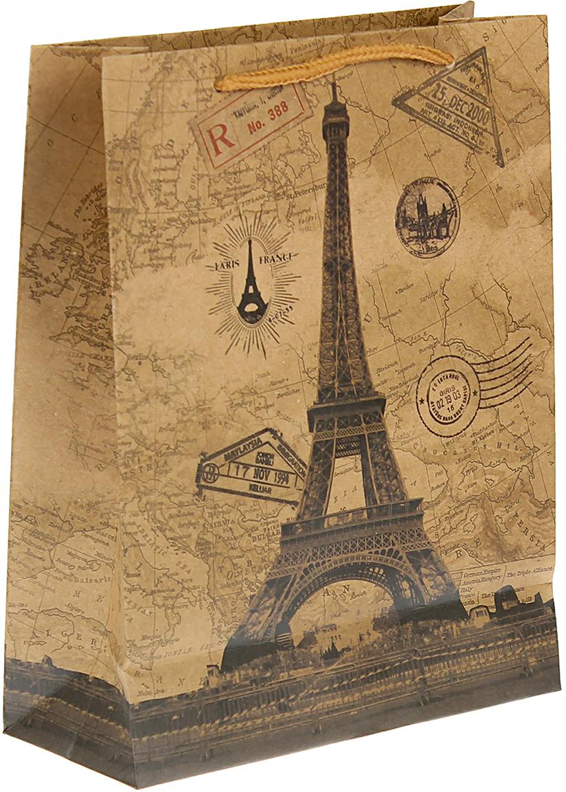 Пакет подарочный Париж, цвет: коричневый, 24 х 33 х 8 см. 24510032451003Любой подарок начинается с упаковки. Что может быть трогательнее и волшебнее, чем ритуал разворачивания полученного презента. И именно оригинальная, со вкусом выбранная упаковка выделит ваш подарок из массы других. Она продемонстрирует самые теплые чувства к виновнику торжества и создаст сказочную атмосферу праздника. Пакет-крафт Париж - это то, что вы искали.