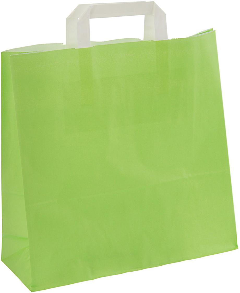 Пакет подарочный Молодая трава, цвет: зеленый, 32 х 12 х 32 см. 24664372466437Любой подарок начинается с упаковки. Что может быть трогательнее и волшебнее, чем ритуал разворачивания полученного презента. И именно оригинальная, со вкусом выбранная упаковка выделит ваш подарок из массы других. Она продемонстрирует самые теплые чувства к виновнику торжества и создаст сказочную атмосферу праздника - это то, что вы искали.
