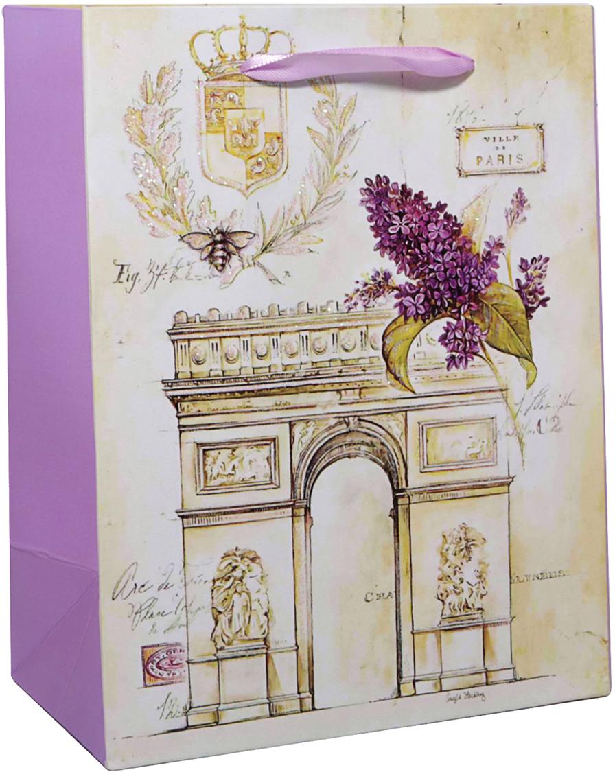 Пакет подарочный Триумфальная арка, цвет: мультиколор, 14 х 6 х 11 см. 2478294 пакет подарочный рисунок цвет мультиколор 11 х 6 х 14 см 1258394