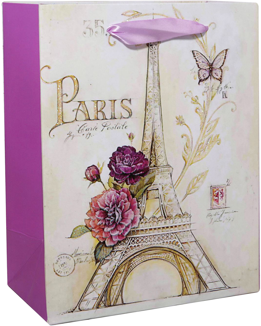 Пакет подарочный Париж, цвет: мультиколор, 14 х 6 х 11 см. 2478295 пакет подарочный рисунок цвет мультиколор 11 х 6 х 14 см 1258394