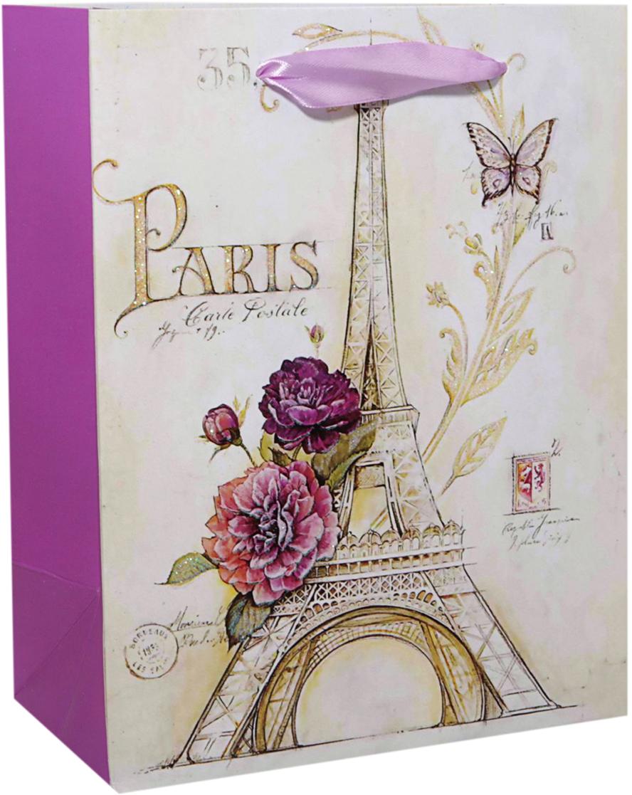 Пакет подарочный Париж, цвет: мультиколор, 23 х 18 х 10 см. 24783012478301Любой подарок начинается с упаковки. Что может быть трогательнее и волшебнее, чем ритуал разворачивания полученного презента. И именно оригинальная, со вкусом выбранная упаковка выделит ваш подарок из массы других. Она продемонстрирует самые теплые чувства к виновнику торжества и создаст сказочную атмосферу праздника. Пакет подарочный Париж - это то, что вы искали.