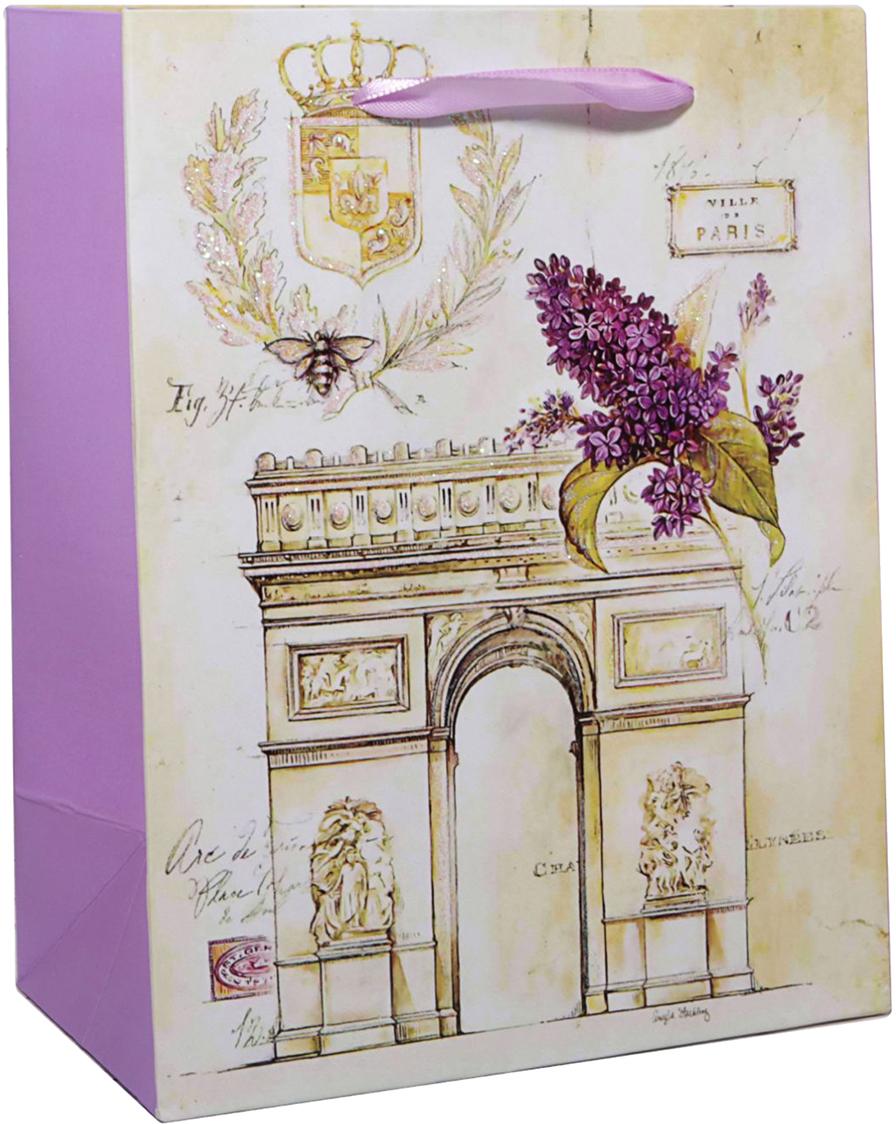 Пакет подарочный Триумфальная арка, цвет: мультиколор, 32 х 26 х 11 см. 24783072478307Любой подарок начинается с упаковки. Что может быть трогательнее и волшебнее, чем ритуал разворачивания полученного презента. И именно оригинальная, со вкусом выбранная упаковка выделит ваш подарок из массы других. Она продемонстрирует самые теплые чувства к виновнику торжества и создаст сказочную атмосферу праздника. Пакет подарочный Триумфальная арка - это то, что вы искали.