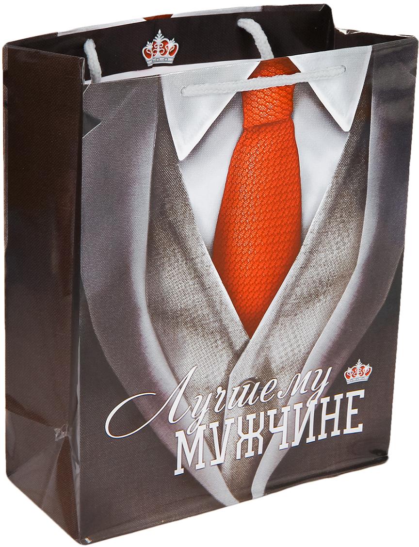 Пакет подарочный Дарите Счастье Лучшему мужчине, цвет: мультиколор, 23 х 8 х 27 см. 25842552584255Любой подарок начинается с упаковки. Что может быть трогательнее и волшебнее, чем ритуал разворачивания полученного презента. И именно оригинальная, со вкусом выбранная упаковка выделит ваш подарок из массы других. Она продемонстрирует самые теплые чувства к виновнику торжества и создаст сказочную атмосферу праздника - это то, что вы искали.