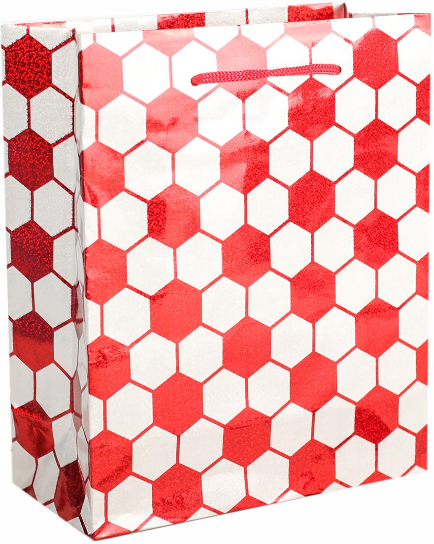 Пакет подарочный, голографический, цвет: красный, 14,5 х 11,5 х 6,5 см. 26251982625198Любой подарок начинается с упаковки. Что может быть трогательнее и волшебнее, чем ритуал разворачивания полученного презента. И именно оригинальная, со вкусом выбранная упаковка выделит ваш подарок из массы других. Она продемонстрирует самые теплые чувства к виновнику торжества и создаст сказочную атмосферу праздника. Пакет голографический - это то, что вы искали.
