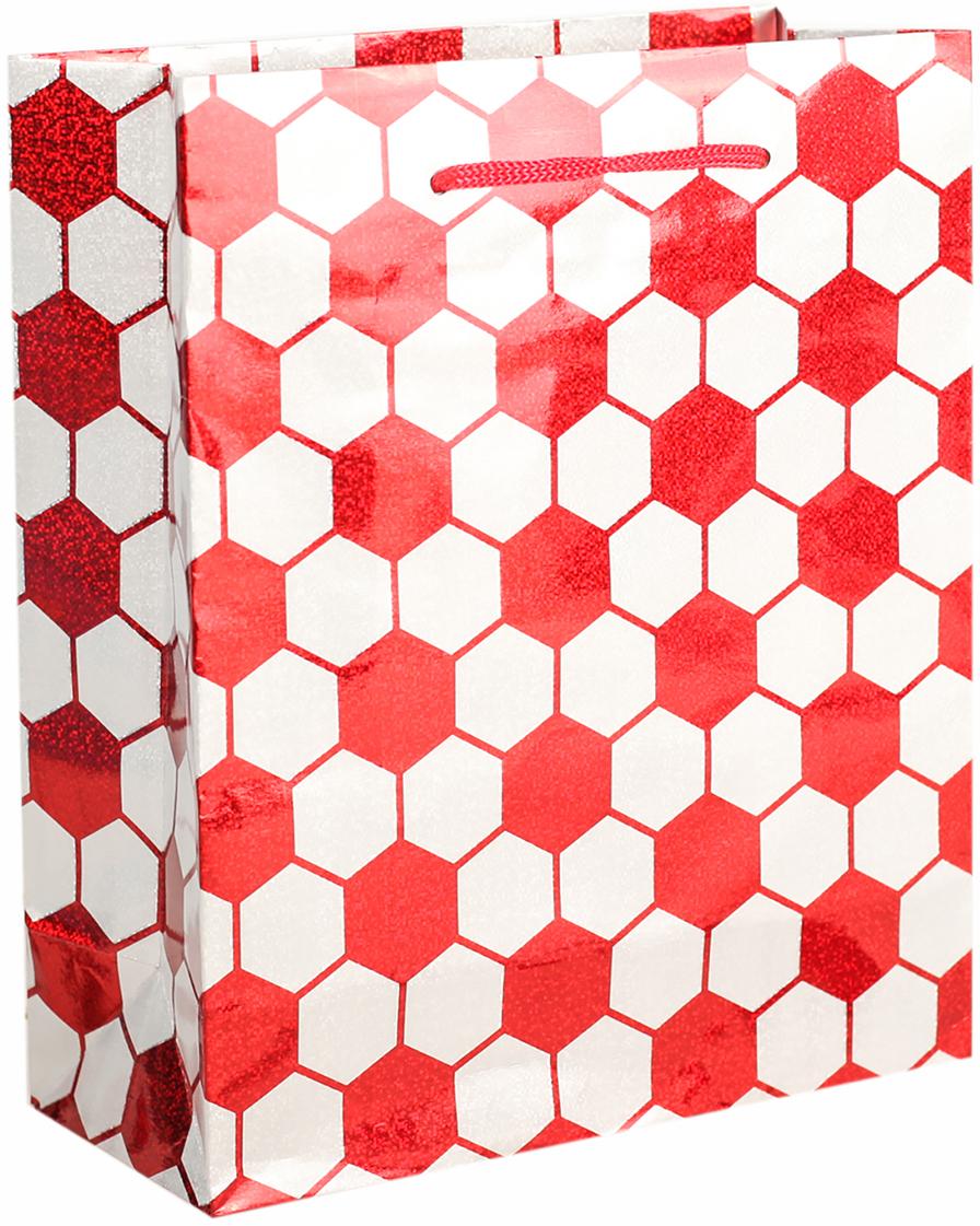 Пакет подарочный, голографический, цвет: красный, 21,5 х 18 х 7,5 см. 26252072625207Любой подарок начинается с упаковки. Что может быть трогательнее и волшебнее, чем ритуал разворачивания полученного презента. И именно оригинальная, со вкусом выбранная упаковка выделит ваш подарок из массы других. Она продемонстрирует самые теплые чувства к виновнику торжества и создаст сказочную атмосферу праздника. Пакет голографический - это то, что вы искали.