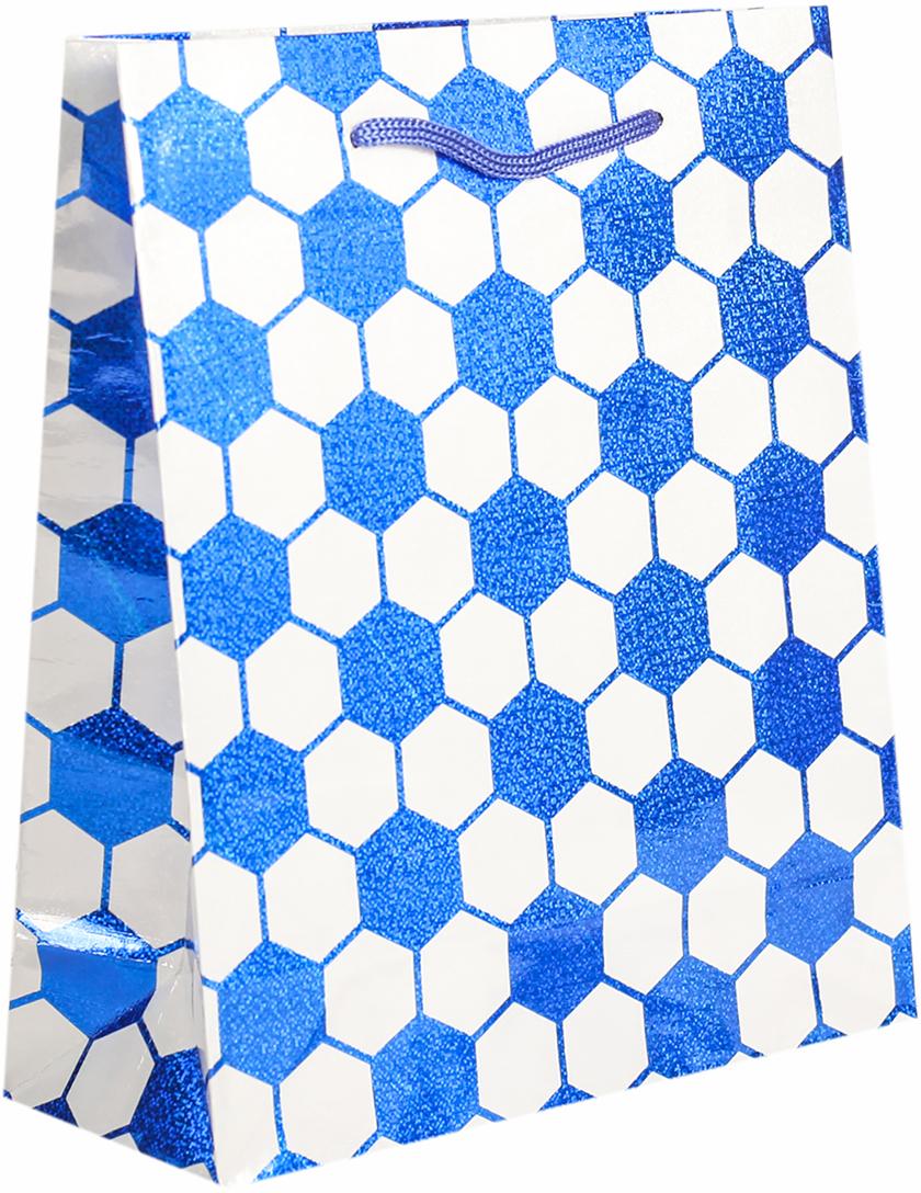 Пакет подарочный, голографический, цвет: синий, 21,5 х 18 х 7,5 см. 26252082625208Любой подарок начинается с упаковки. Что может быть трогательнее и волшебнее, чем ритуал разворачивания полученного презента. И именно оригинальная, со вкусом выбранная упаковка выделит ваш подарок из массы других. Она продемонстрирует самые теплые чувства к виновнику торжества и создаст сказочную атмосферу праздника. Пакет голографический - это то, что вы искали.