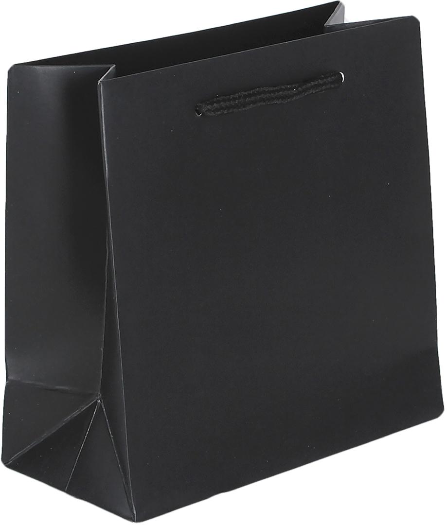 Пакет подарочный Люкс, цвет: черный, 15 х 14,5 х 7 см. 26544652654465Любой подарок начинается с упаковки. Что может быть трогательнее и волшебнее, чем ритуал разворачивания полученного презента. И именно оригинальная, со вкусом выбранная упаковка выделит ваш подарок из массы других. Она продемонстрирует самые теплые чувства к виновнику торжества и создаст сказочную атмосферу праздника. Пакет подарочный - это то, что вы искали.