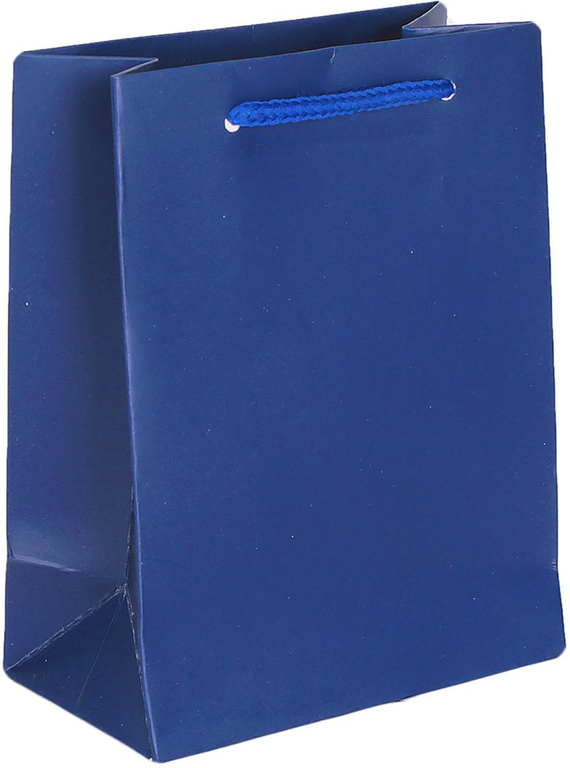 Пакет подарочный Люкс, цвет: синий, 14 х 11 х 6 см. 26544922654492Любой подарок начинается с упаковки. Что может быть трогательнее и волшебнее, чем ритуал разворачивания полученного презента. И именно оригинальная, со вкусом выбранная упаковка выделит ваш подарок из массы других. Она продемонстрирует самые теплые чувства к виновнику торжества и создаст сказочную атмосферу праздника. Пакет подарочный, люкс - это то, что вы искали.