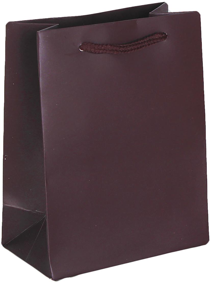 Пакет подарочный Люкс, цвет: коричневый, 14 х 11 х 6 см. 26544932654493Любой подарок начинается с упаковки. Что может быть трогательнее и волшебнее, чем ритуал разворачивания полученного презента. И именно оригинальная, со вкусом выбранная упаковка выделит ваш подарок из массы других. Она продемонстрирует самые теплые чувства к виновнику торжества и создаст сказочную атмосферу праздника. Пакет подарочный, люкс - это то, что вы искали.
