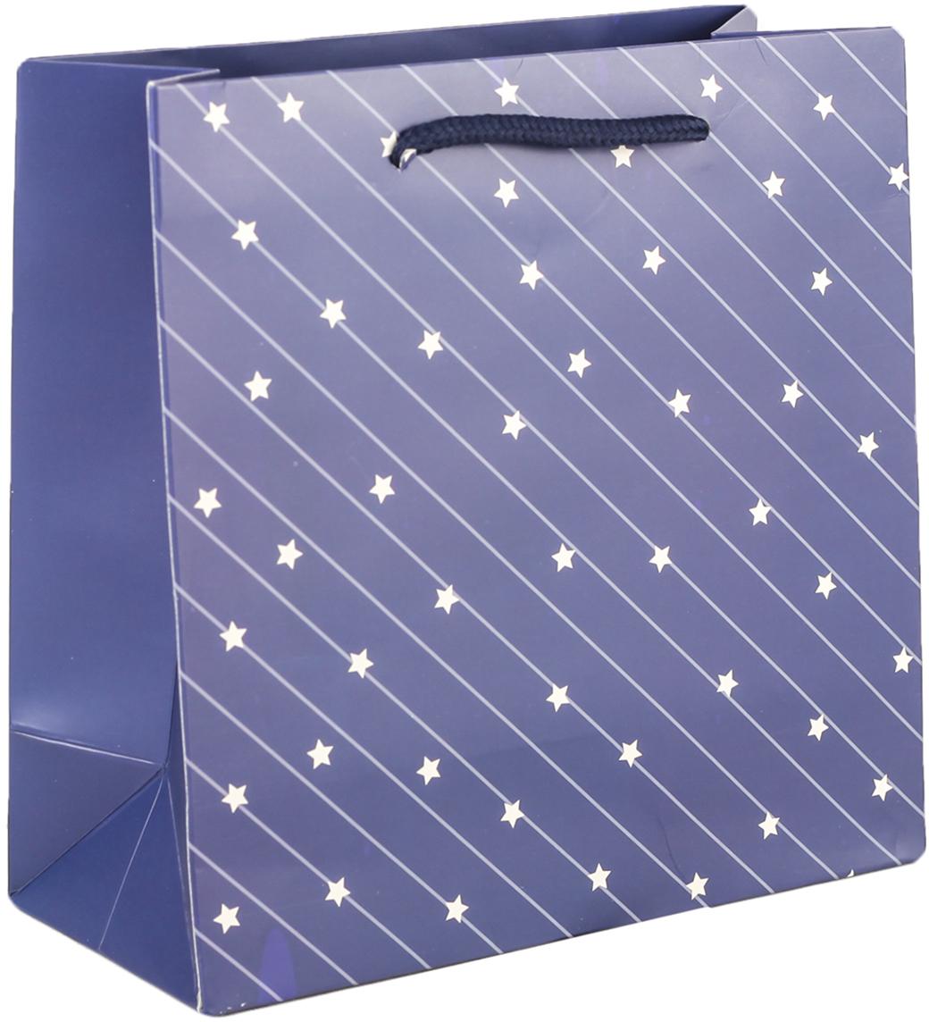 Пакет подарочный Люкс. Звезды, цвет: синий, 20 х 20 х 9 см. 27497102749710Любой подарок начинается с упаковки. Что может быть трогательнее и волшебнее, чем ритуал разворачивания полученного презента. И именно оригинальная, со вкусом выбранная упаковка выделит ваш подарок из массы других. Она продемонстрирует самые теплые чувства к виновнику торжества и создаст сказочную атмосферу праздника. Пакет подарочный Звезды, люкс - это то, что вы искали.