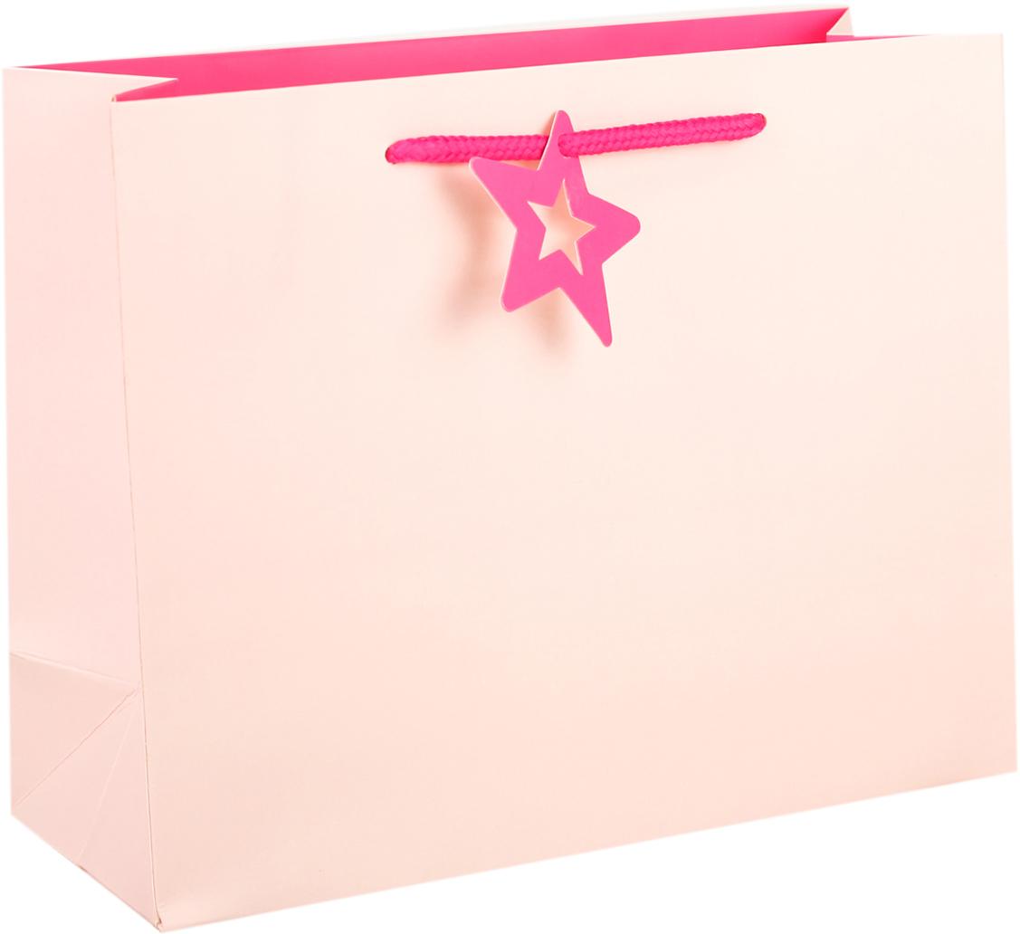 Пакет подарочный, цвет: розовый, 24,5 х 19,5 х 9,5 см. 27497132749713Любой подарок начинается с упаковки. Что может быть трогательнее и волшебнее, чем ритуал разворачивания полученного презента. И именно оригинальная, со вкусом выбранная упаковка выделит ваш подарок из массы других. Она продемонстрирует самые теплые чувства к виновнику торжества и создаст сказочную атмосферу праздника. Пакет подарочный - это то, что вы искали.