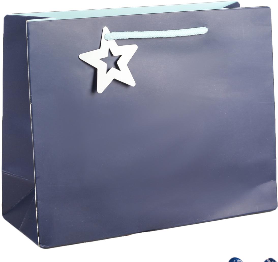 Пакет подарочный, цвет: синий, 24,5 х 19,5 х 9,5 см. 27497142749714Любой подарок начинается с упаковки. Что может быть трогательнее и волшебнее, чем ритуал разворачивания полученного презента. И именно оригинальная, со вкусом выбранная упаковка выделит ваш подарок из массы других. Она продемонстрирует самые теплые чувства к виновнику торжества и создаст сказочную атмосферу праздника. Пакет подарочный - это то, что вы искали.