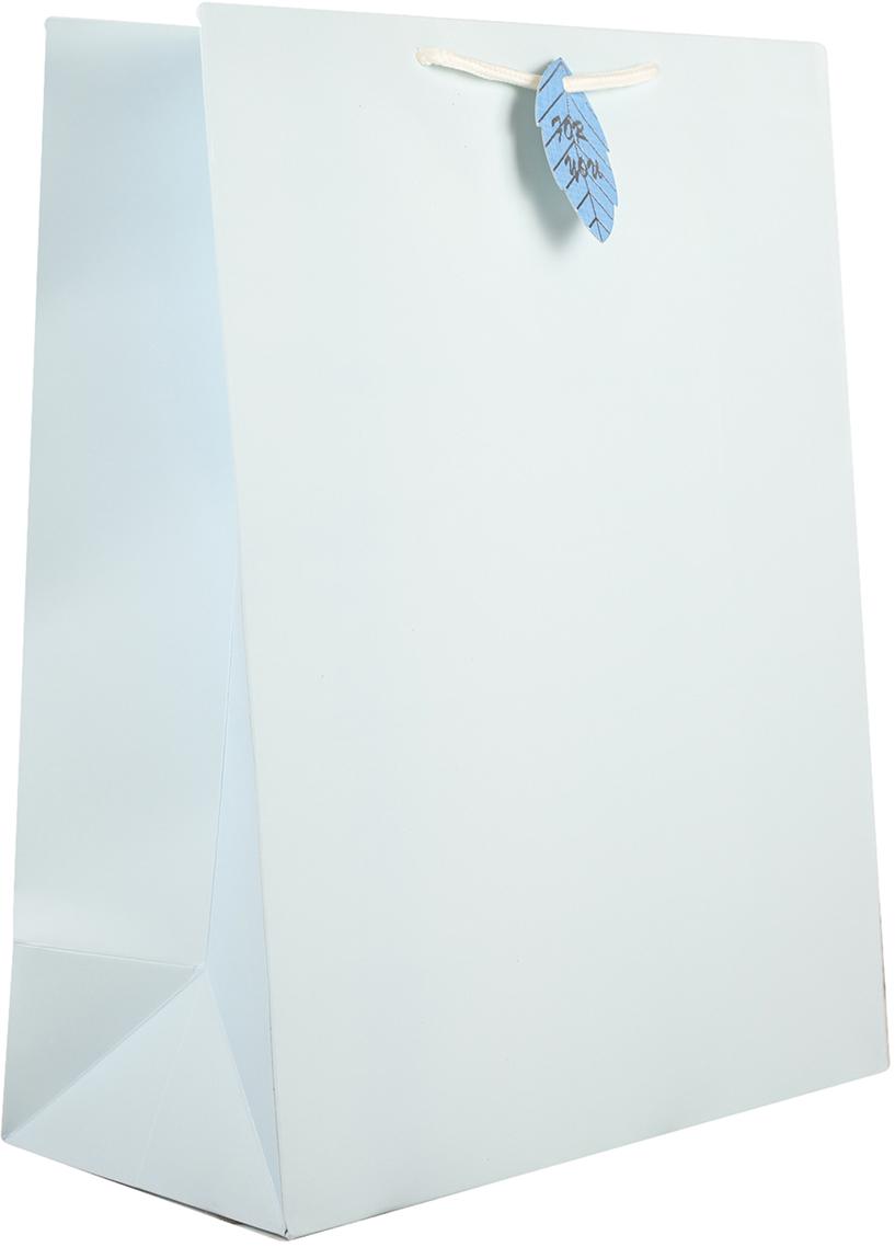 Пакет подарочный, цвет: голубой, 32 х 40,5 х 16 см2749784Любой подарок начинается с упаковки. Что может быть трогательнее и волшебнее, чем ритуал разворачивания полученного презента. И именно оригинальная, со вкусом выбранная упаковка выделит ваш подарок из массы других. Она продемонстрирует самые теплые чувства к виновнику торжества и создаст сказочную атмосферу праздника.