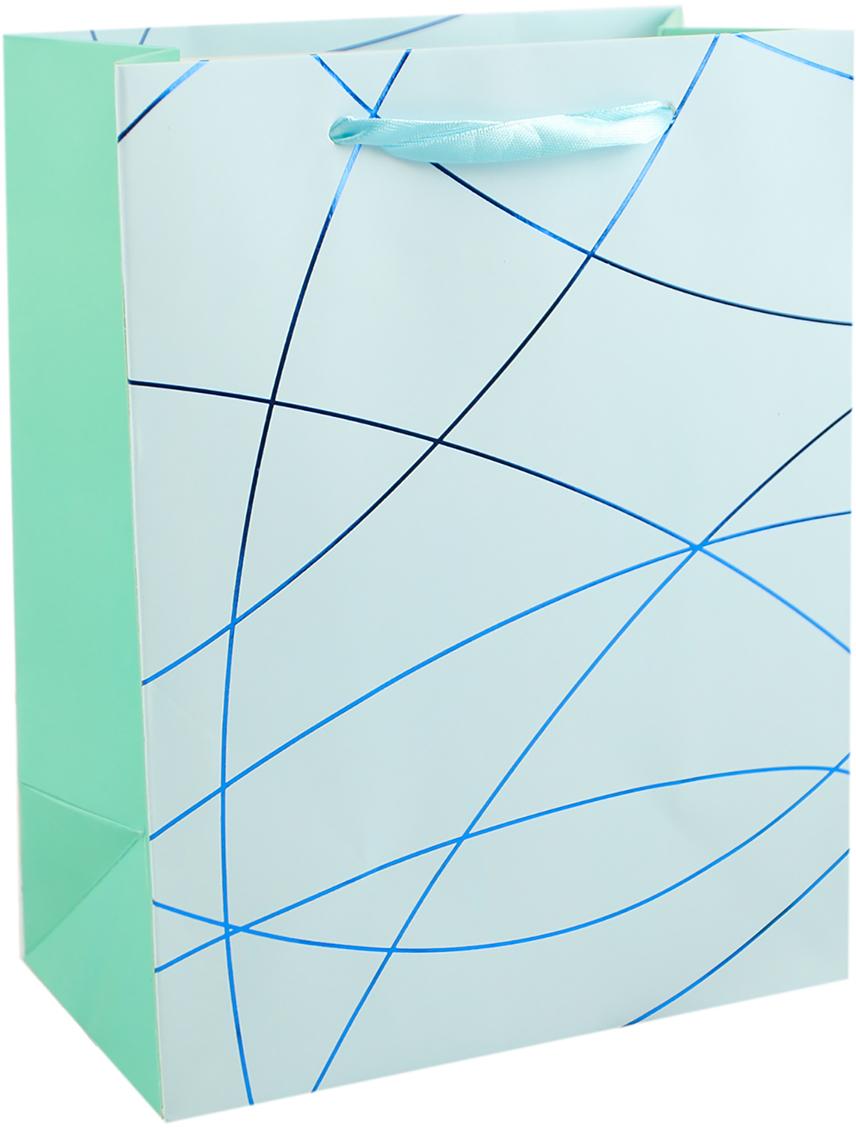 Пакет подарочный Линии, цвет: голубой, 18 х 8 х 23 см. 27910272791027Любой подарок начинается с упаковки. Что может быть трогательнее и волшебнее, чем ритуал разворачивания полученного презента. И именно оригинальная, со вкусом выбранная упаковка выделит ваш подарок из массы других. Она продемонстрирует самые теплые чувства к виновнику торжества и создаст сказочную атмосферу праздника. Пакет подарочный Линии, - это то, что вы искали.