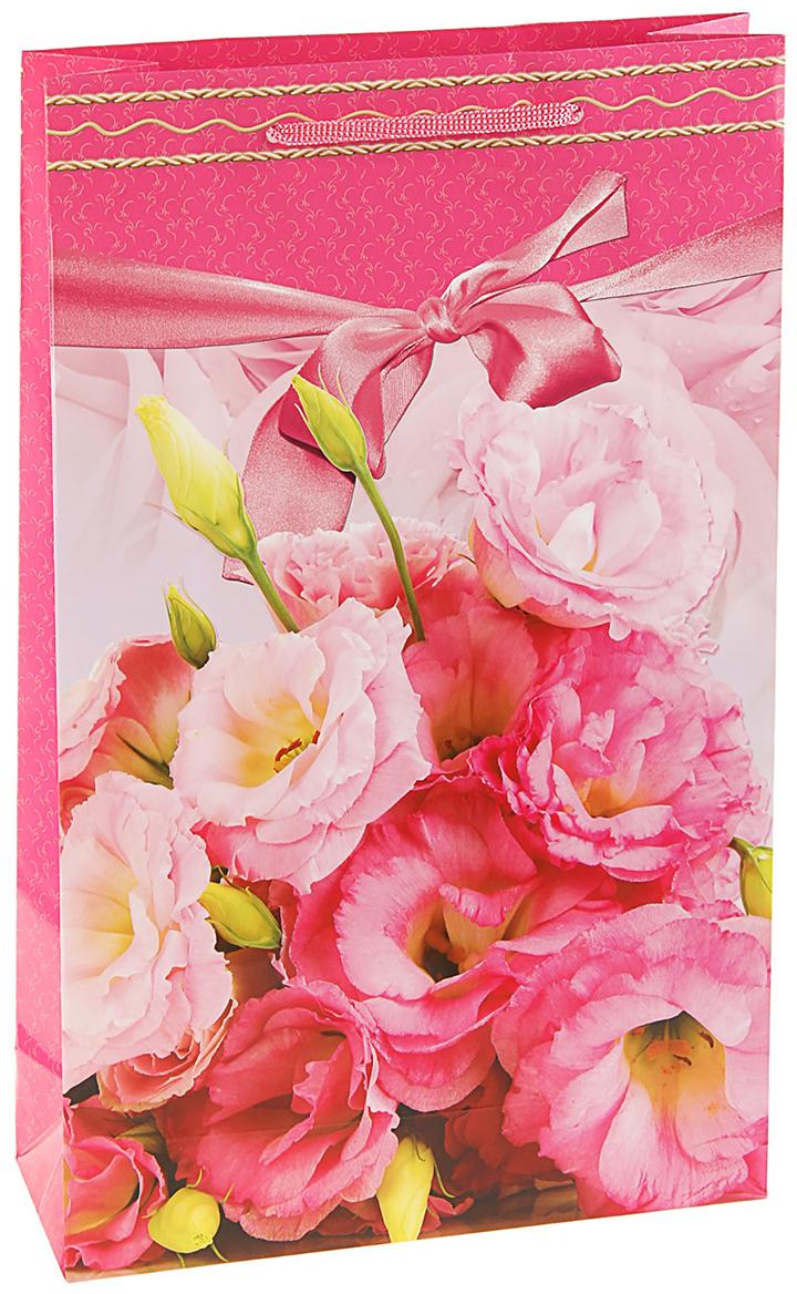Пакет подарочный Нежный розовый, цвет: мультиколор, 24,8 х 9 х 40,5 см. 27930062793006Любой подарок начинается с упаковки. Что может быть трогательнее и волшебнее, чем ритуал разворачивания полученного презента. И именно оригинальная, со вкусом выбранная упаковка выделит ваш подарок из массы других. Она продемонстрирует самые теплые чувства к виновнику торжества и создаст сказочную атмосферу праздника. Пакет подарочный Нежный розовый - это то, что вы искали.