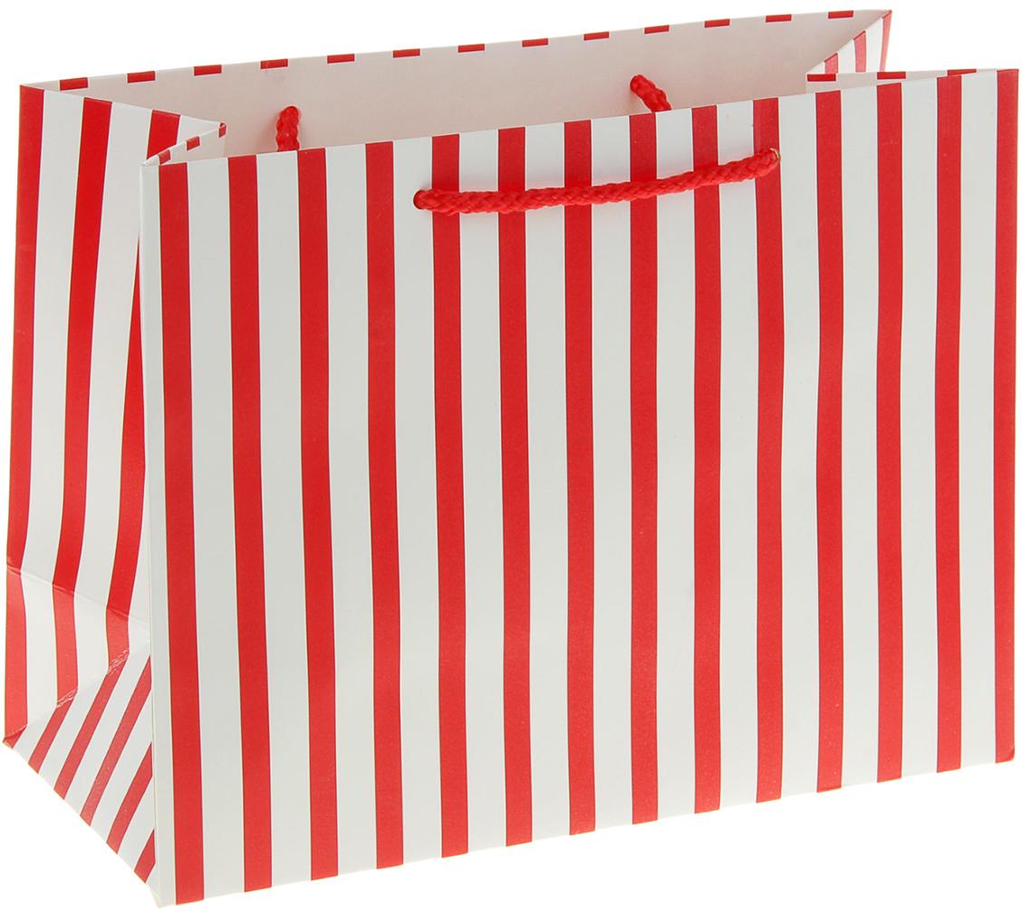 Пакет подарочный Красные полоски, цвет: красный, 11 х 25 х 19 см. 279529279529Любой подарок начинается с упаковки. Что может быть трогательнее и волшебнее, чем ритуал разворачивания полученного презента. И именно оригинальная, со вкусом выбранная упаковка выделит ваш подарок из массы других. Она продемонстрирует самые теплые чувства к виновнику торжества и создаст сказочную атмосферу праздника. Пакет подарочный Красные полоски - это то, что вы искали.