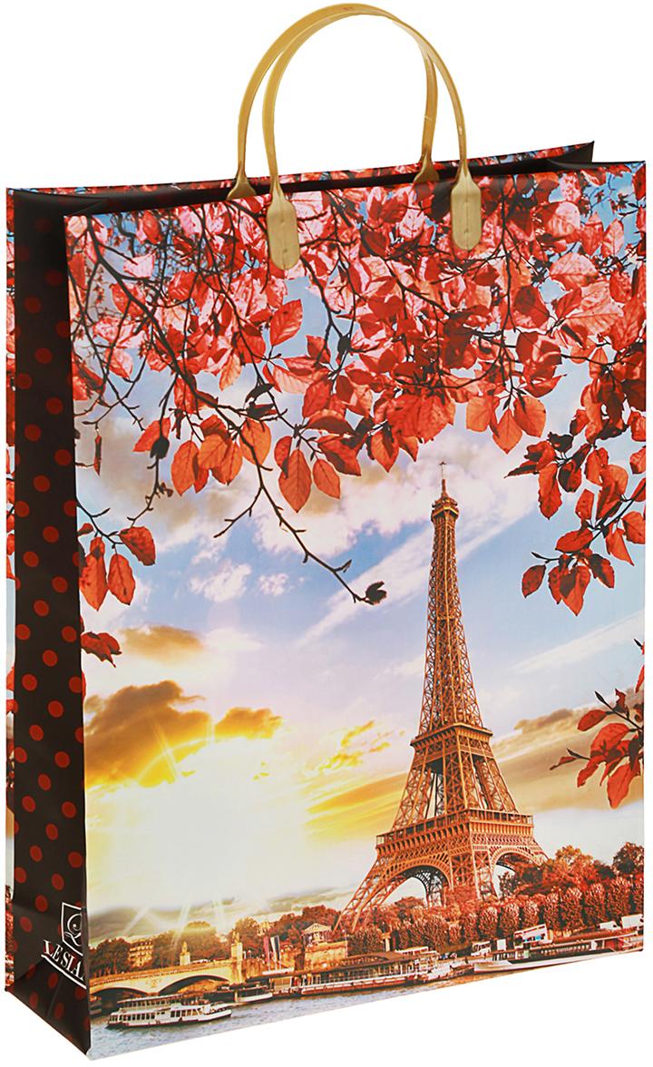 Пакет подарочный Осень в Париже, цвет: мультиколор, 32 х 10 х 42 см. 29802362980236Любой подарок начинается с упаковки. Что может быть трогательнее и волшебнее, чем ритуал разворачивания полученного презента. И именно оригинальная, со вкусом выбранная упаковка выделит ваш подарок из массы других. Она продемонстрирует самые теплые чувства к виновнику торжества и создаст сказочную атмосферу праздника. Пакет Осень в Париже мягкий пластик, объемный - это то, что вы искали.