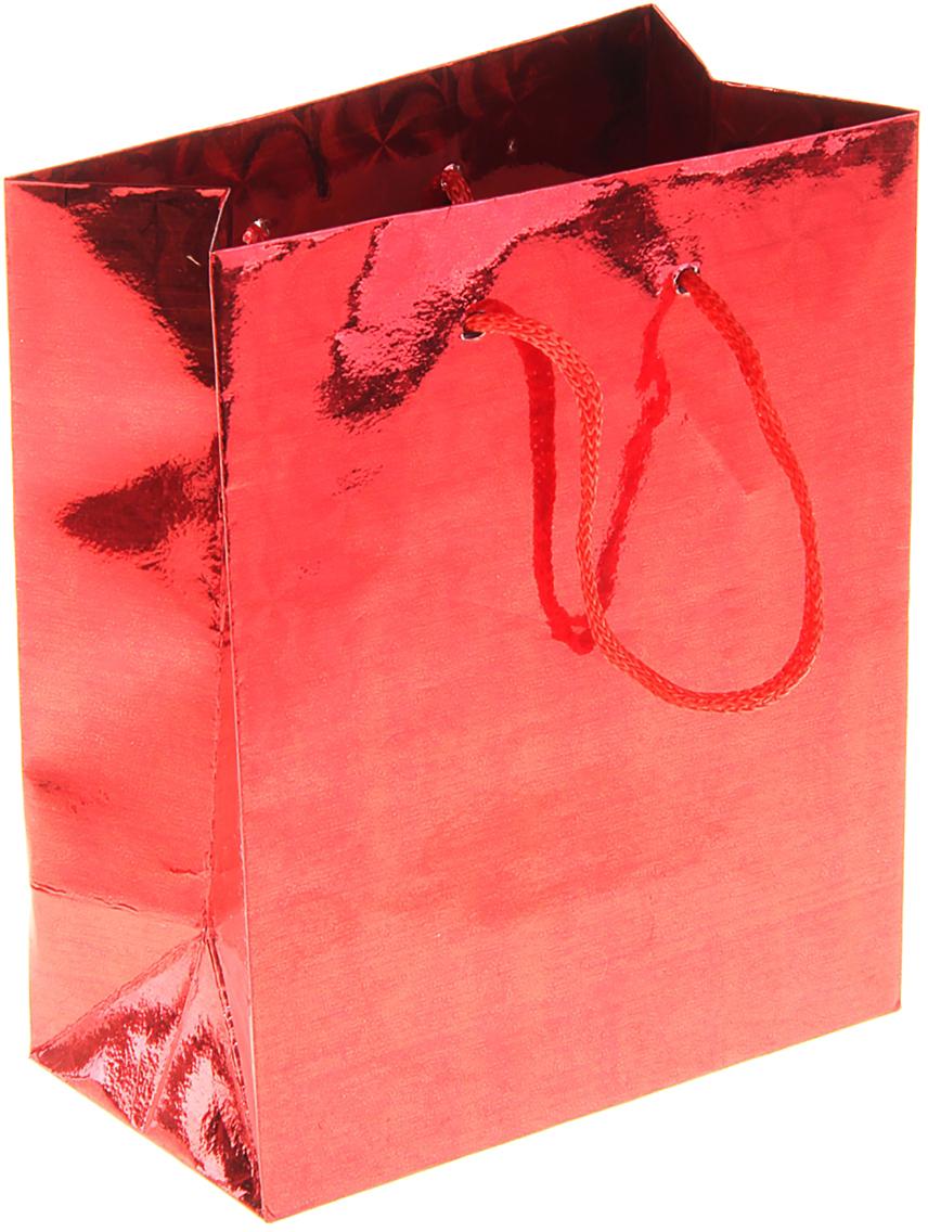 Пакет подарочный Рисунок, голографический, цвет: красный, 11,5 х 6,5 х 14,5 см. 822491822491Любой подарок начинается с упаковки. Что может быть трогательнее и волшебнее, чем ритуал разворачивания полученного презента. И именно оригинальная, со вкусом выбранная упаковка выделит ваш подарок из массы других. Она продемонстрирует самые теплые чувства к виновнику торжества и создаст сказочную атмосферу праздника. Пакет голографический - это то, что вы искали.