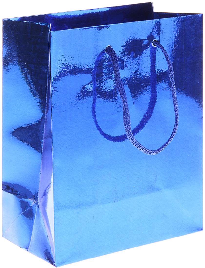 Пакет подарочный Рисунок, голографический, цвет: синий, 6,5 х 11,5 х 14,5 см. 822492822492Любой подарок начинается с упаковки. Что может быть трогательнее и волшебнее, чем ритуал разворачивания полученного презента. И именно оригинальная, со вкусом выбранная упаковка выделит ваш подарок из массы других. Она продемонстрирует самые теплые чувства к виновнику торжества и создаст сказочную атмосферу праздника. Пакет голографический - это то, что вы искали.